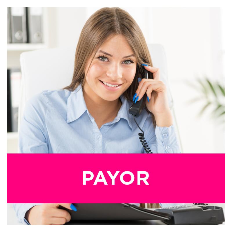Payor_icon